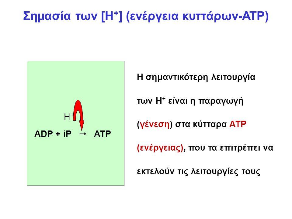 Σημασία των [Η+] (ενέργεια κυττάρων-ATP)